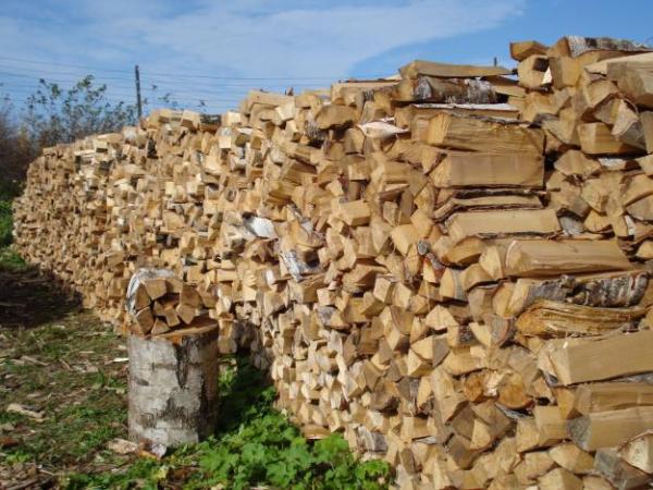 Продам дрова(береза, осина, сухара)колотые, пиленные, можем напилить под ваши р-ры.  Так же Горбыль