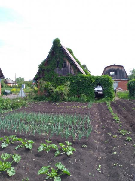 Продам садовый участок в коллективном саду 19,4 сотки, кирпичный домик с мансардой (продам с урожаем