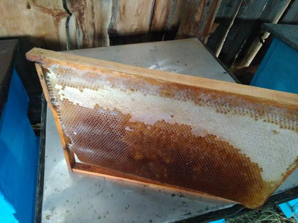 Продаю корпусные рамки сушью, с мёдом 60 штук.Цена договорная