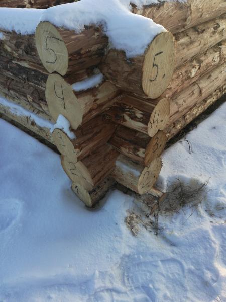 Сруб 3 *5 в чашу, зимний лес. Высота 2 м. Так же изготовление срубов по вашим р-рам в кратчайшие сро